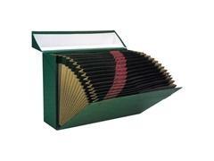 Caja transferencia fuelle cartón forrado 20 departamentos 385x260X110 verde